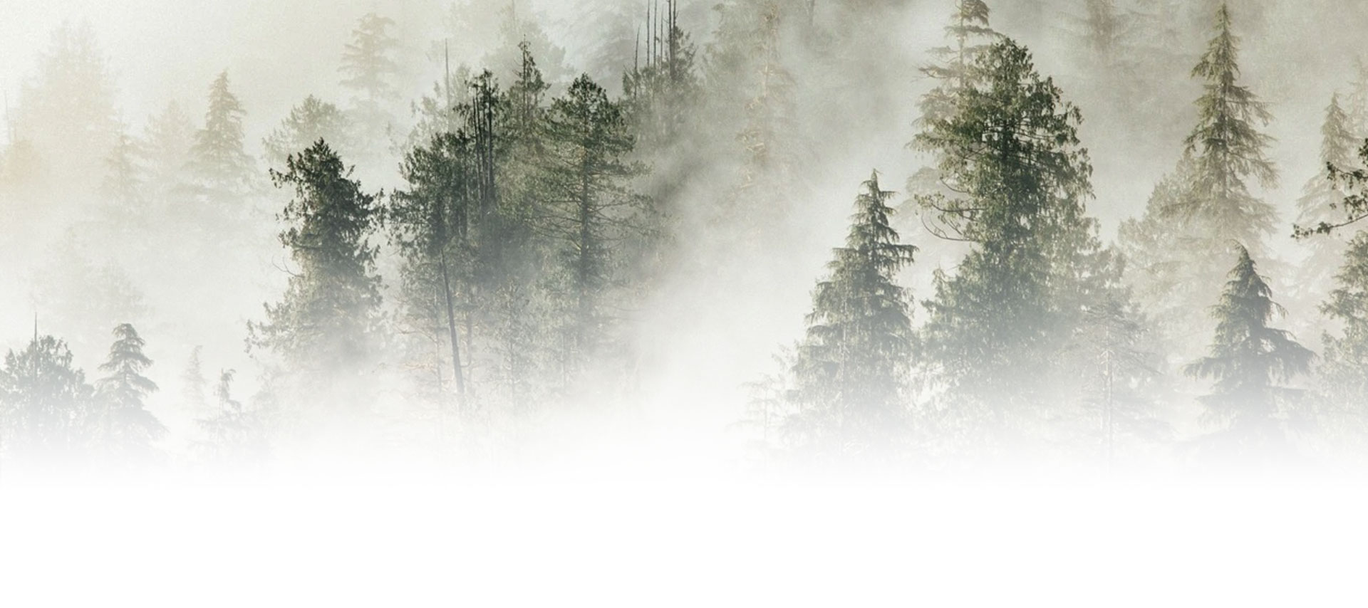 prepper-background