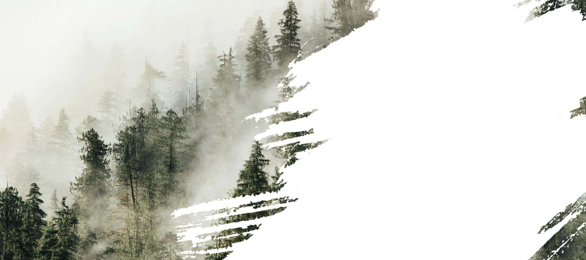 sport-smoke-background-prepper-2